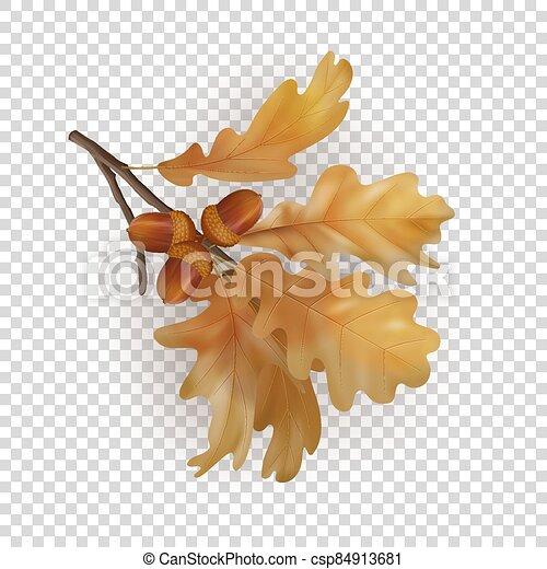 Autumn Oak Branch - csp84913681