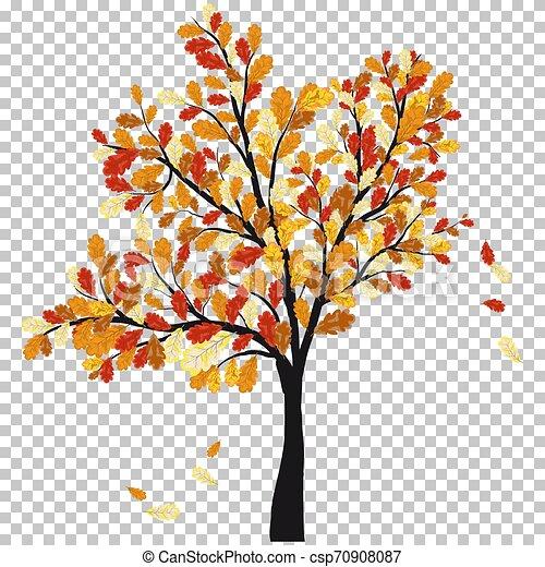 Autumn oak - csp70908087