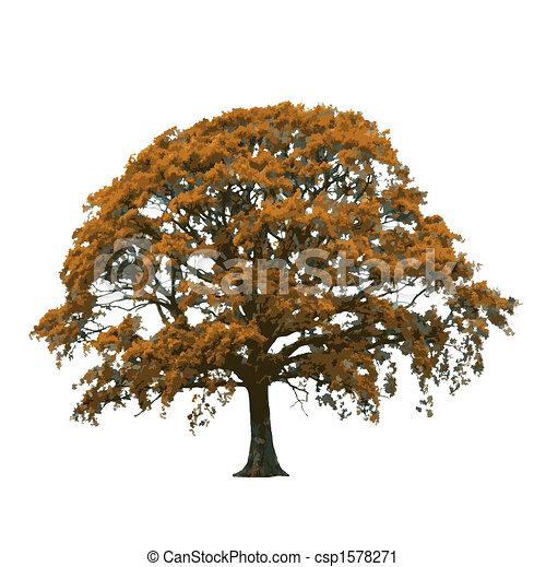 Autumn Oak Tree Abstract - csp1578271