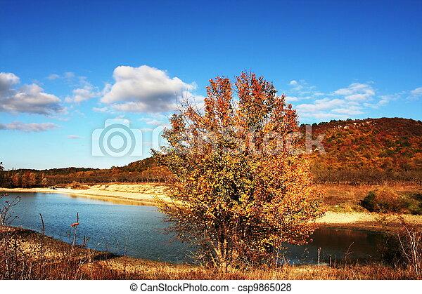 Autumn on lake - csp9865028