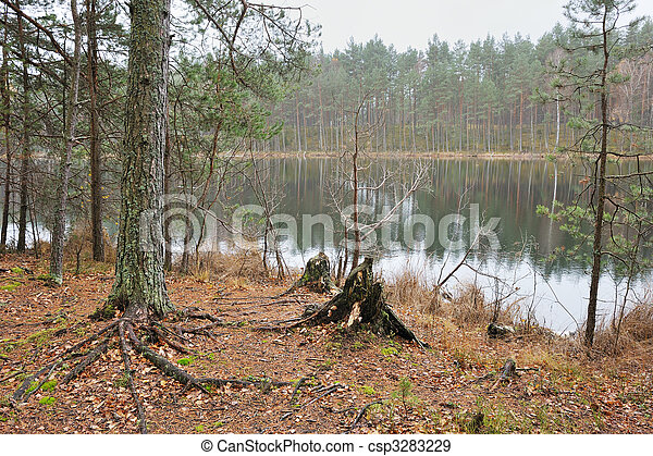 Autumn on the forest lake. - csp3283229