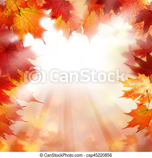 Autumn Orange Border Background with Fall Maple Leaves and White Copyspace - csp45220856