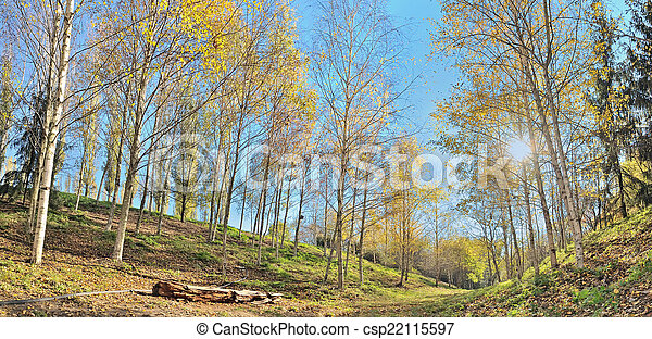 autumn panorama - csp22115597