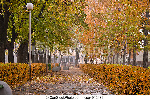 Autumn Park. Alley with yellow trees and fallen leaves. Fall - csp4912436