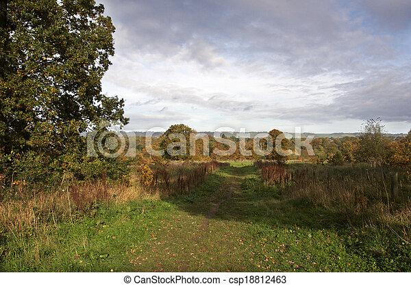 Autumn park - csp18812463
