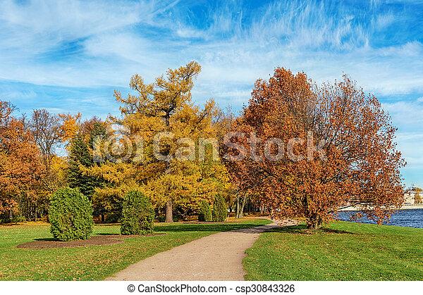 autumn park - csp30843326