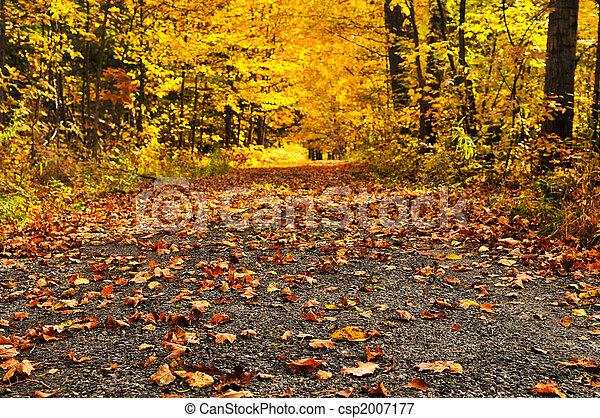 Autumn path - csp2007177