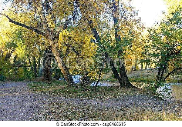 Autumn Path - csp0468615
