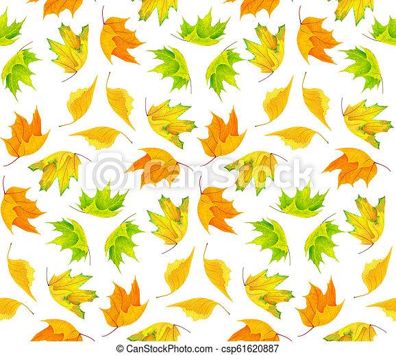 Autumn pattern - csp61620887