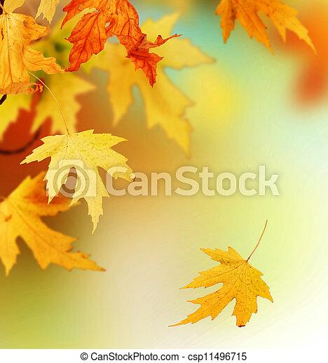 Autumn  - csp11496715