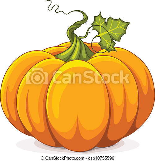Autumn Pumpkin - csp10755596