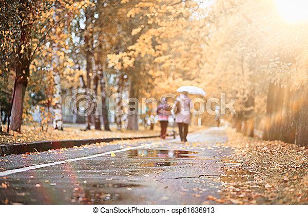 Autumn rain in the park - csp61636913