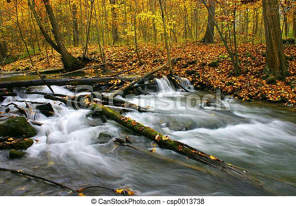 Autumn Rapids - csp0013738