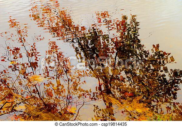 Autumn Reflections  - csp19814435