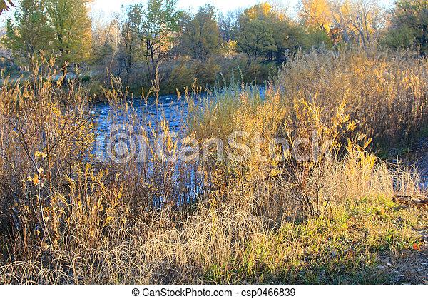 Autumn River - csp0466839
