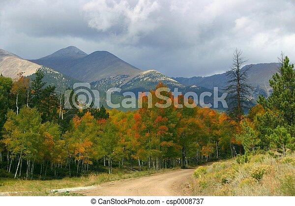 Autumn Road - csp0008737