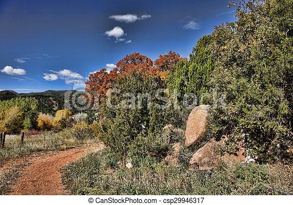 Autumn Road - csp29946317