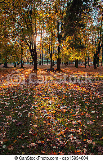 Autumn scene in a city park - csp15934604