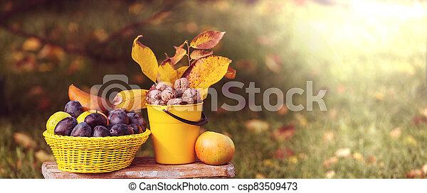 Autumn scene - csp83509473