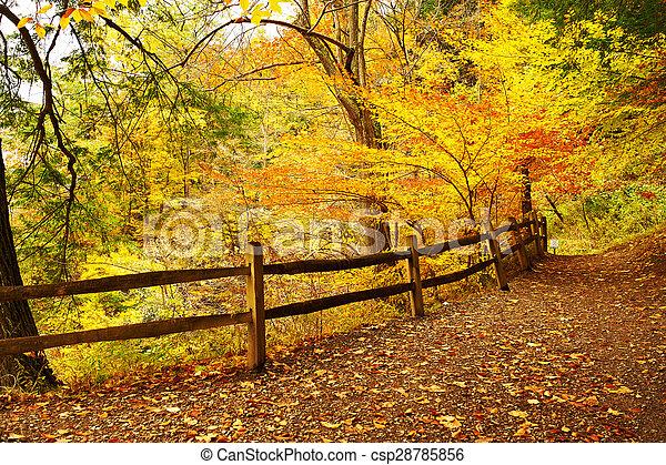 Autumn scene - csp28785856