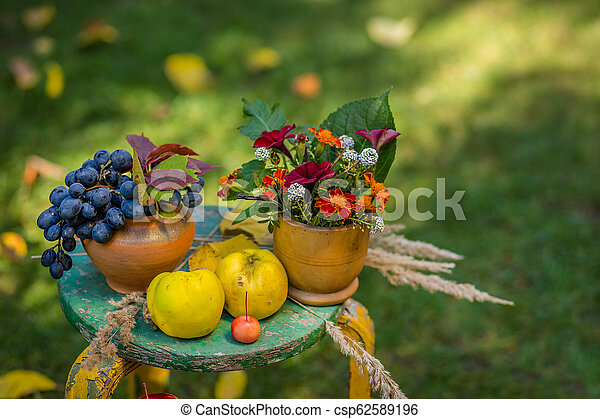 Autumn scene with plants, pumpkins, apples in a wicker basket, ceramic pots, wooden chair, vintage style, composition in the garden. - csp62589196