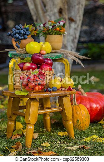 Autumn scene with plants, pumpkins, apples in a wicker basket, ceramic pots, wooden chair, vintage style, composition in the garden. - csp62589303