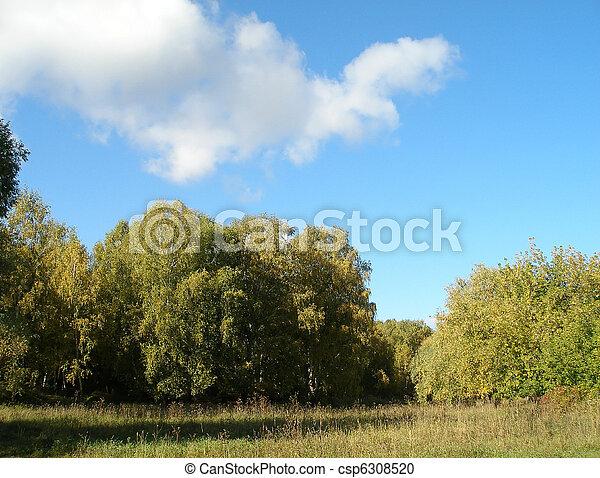 Autumn Siberian landscape - csp6308520