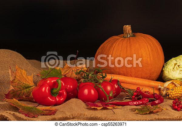Autumn Still Life - csp55263971