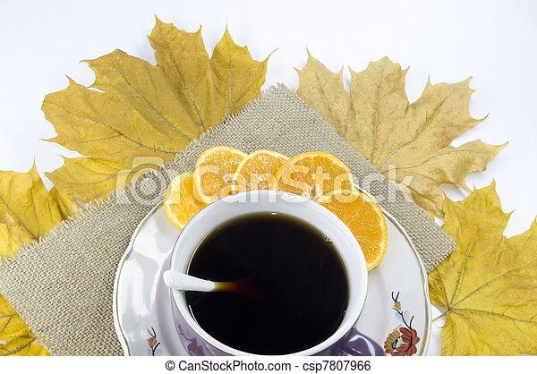 autumn still-life   - csp7807966