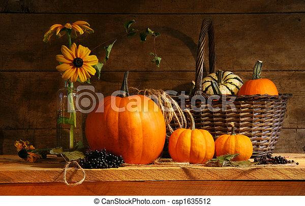 Autumn still life - csp1635512