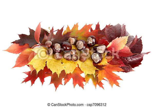 Autumn still life. - csp7096312