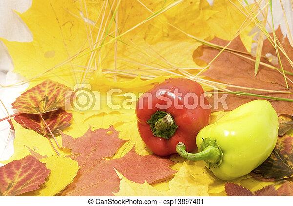 Autumn Still Life - csp13897401