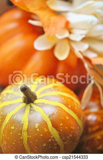 Autumn still life - csp21544333