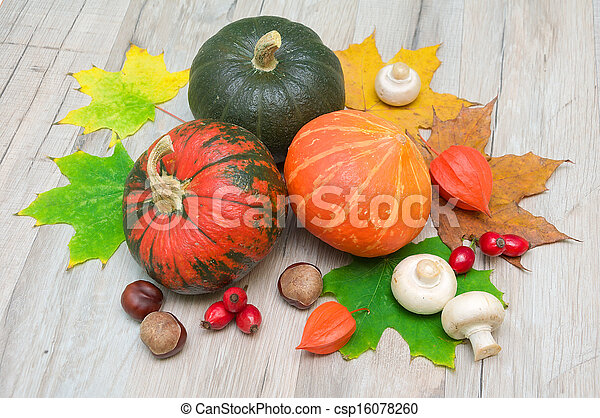 autumn still life. three pumpkins, chestnuts, berries, rose hips, mushrooms and autumn maple leaves. - csp16078260