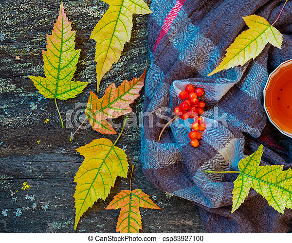 Autumn still life with cup of tea, warming scarf and colorful leaves over rustic wooden background - csp83927100