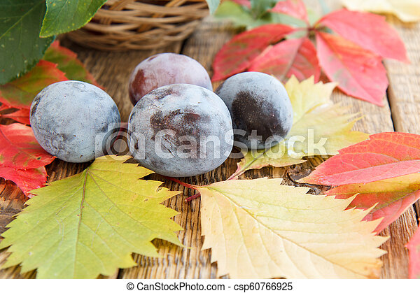 Autumn still life with plums and wicker basket, green, yellow and red leaves - csp60766925
