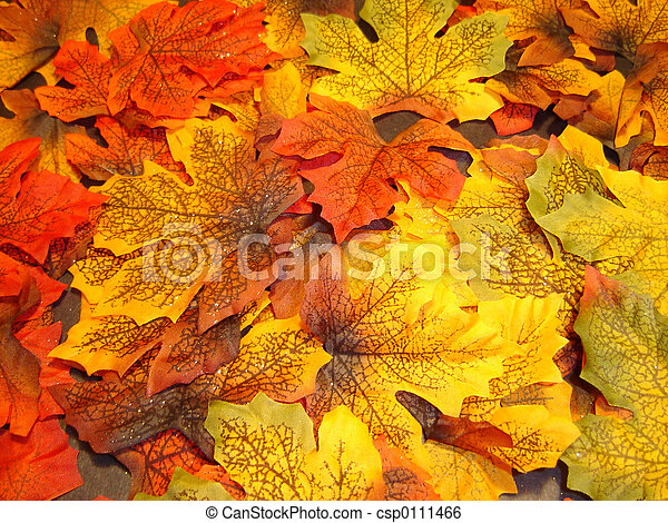 Autumn - csp0111466