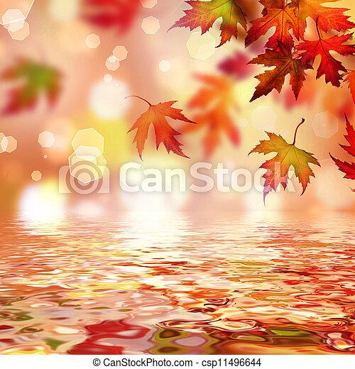 Autumn  - csp11496644