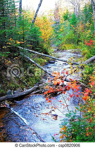 Autumn Stream - csp0820906