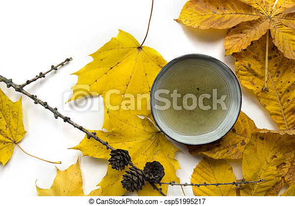 Autumn tea time still life closup on white background - csp51995217