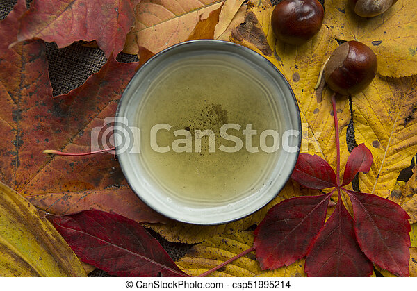 Autumn tea time still life top view closup - csp51995214
