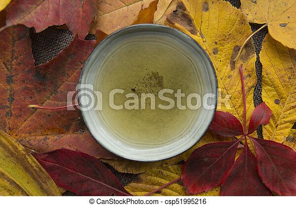 Autumn tea time still life top view closup - csp51995216