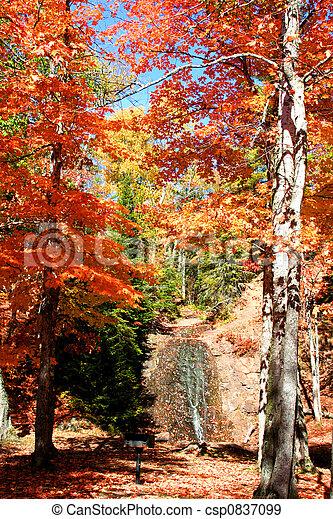 Autumn time  - csp0837099