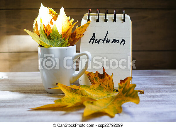 Autumn time - csp22792299