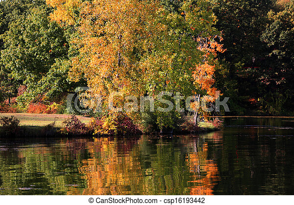 Autumn tree reflection - csp16193442