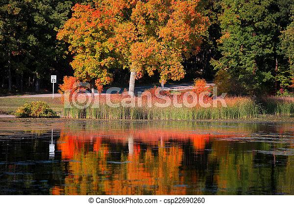 Autumn tree reflections - csp22690260