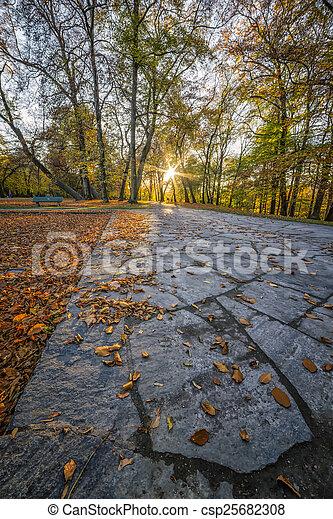 Autumn View in a Park - csp25682308