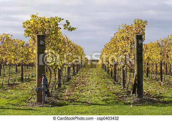 Autumn Vines 02 - csp0403432