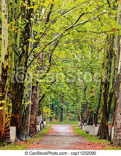 Autumn walk road - csp11232090