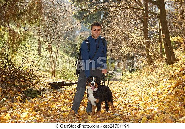 autumn walk - csp24701194